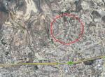 rsz_map